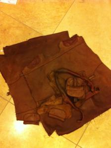 paramount purse